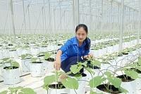 9X khởi nghiệp thành công với mô hình nông nghiệp công nghệ cao