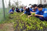 Vườn ươm cây giống của thanh niên Hà Tĩnh – Mô hình thiết thực cần nhân rộng